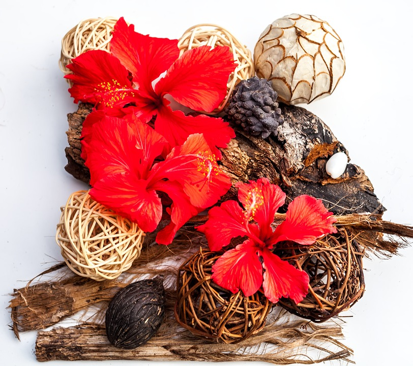 Flower Arrangement Hibiscus Free Photo On Pixabay