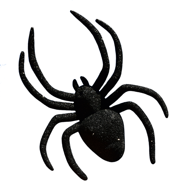 Araign e halloween accessoires image gratuite sur pixabay - Araignee dessin ...