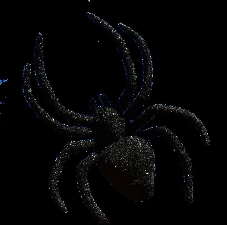 Free illustration: Spider, Halloween, Accessories - Free Image on ...