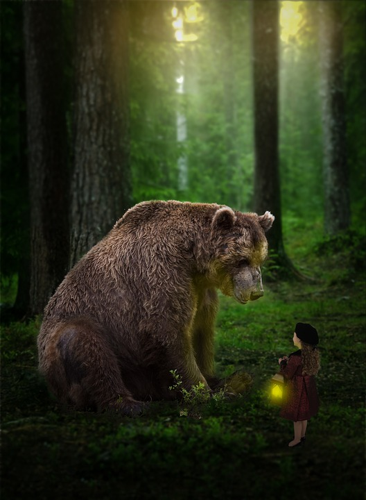 Photoshop Bear Forrest 183 Free Photo On Pixabay