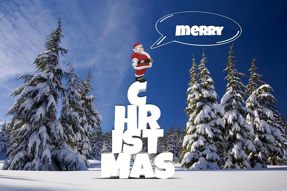 Weihnachten Winter Wald · Kostenloses Foto auf Pixabay