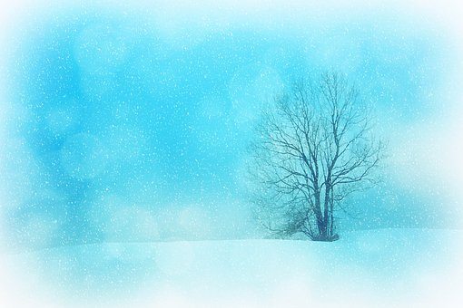 Texture, Background, Winter, Wintry