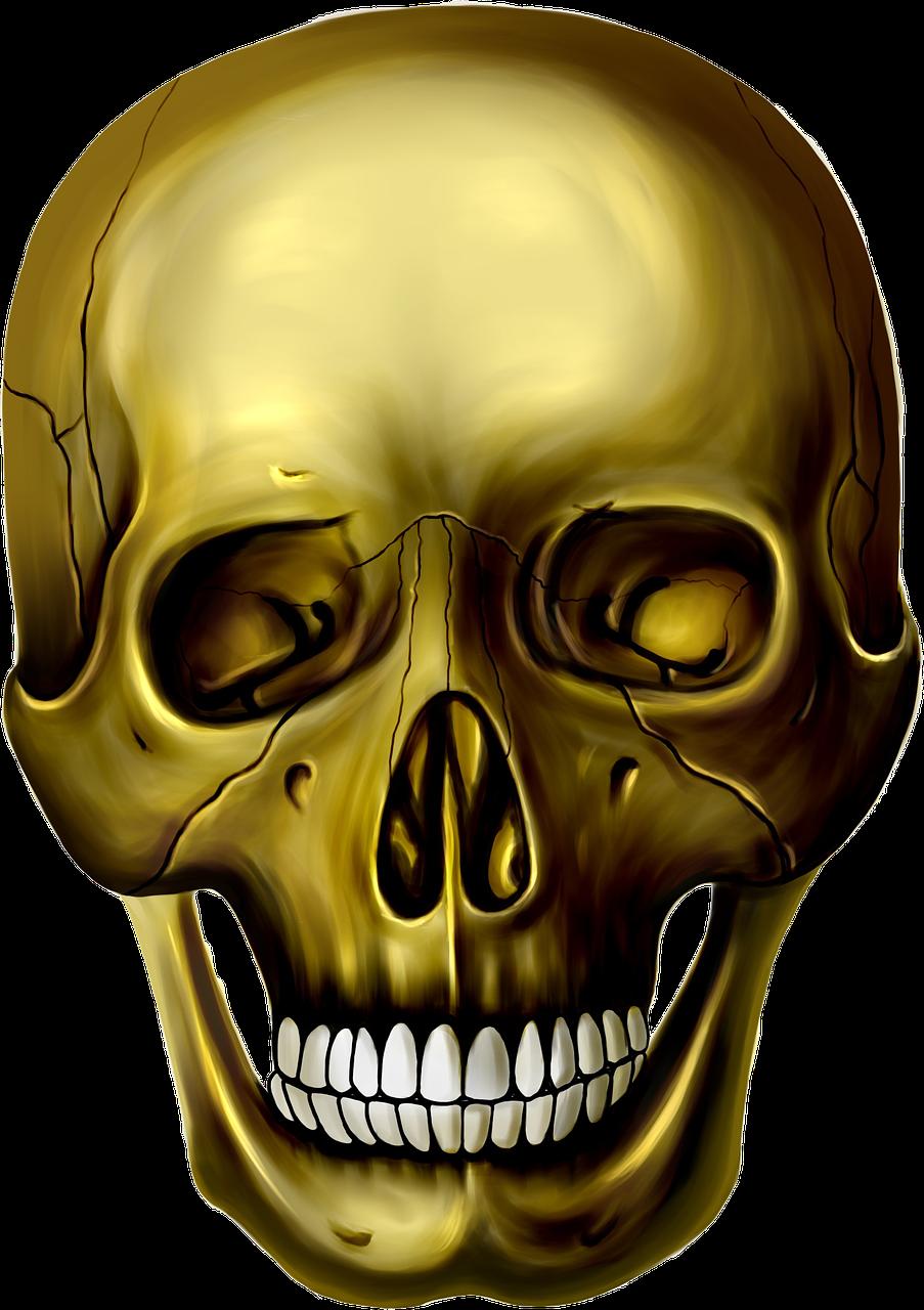 картинки голова черепа этому