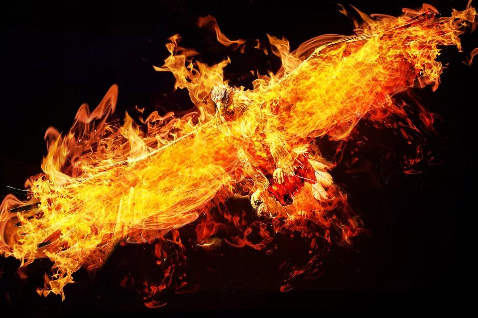 Free photo phoenix photoshop adler fire free image on pixabay 2877486 - Fenix bird hd images ...