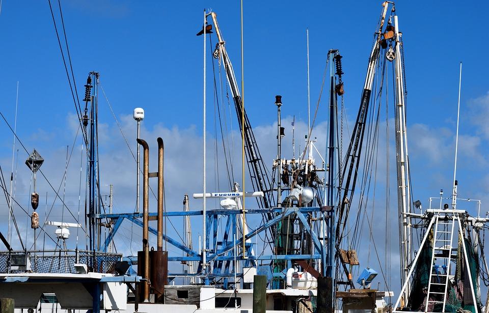 Kommerzielle Fischernetze, Garnelen Netze, Fisch