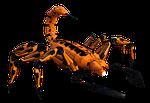 scorpio, arachnid