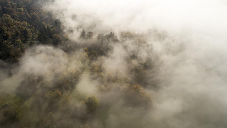 雾, 云, 黄昏, 云量, 飞行, 秋, 空气, 景观, 树, 森林, 4K壁纸, 背景