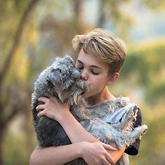 Αγόρι, Σκύλος, Φιλία, Αγάπη, Φίλο, Μαζί