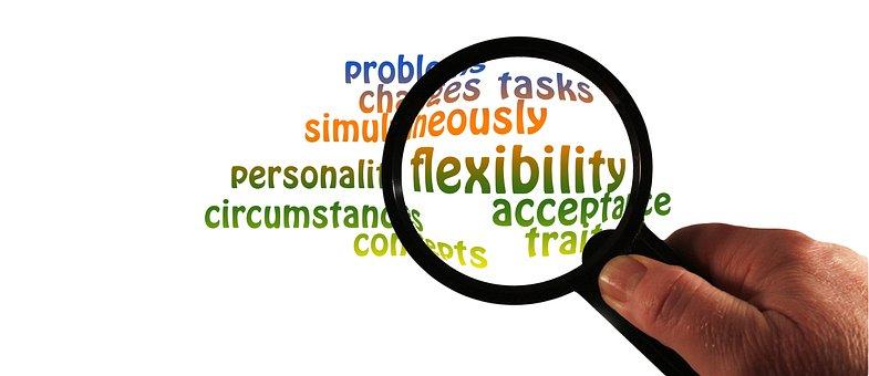虫眼鏡, 柔軟性, 人格, 特徴, 対処, 変化, 状況, 問題, タスク