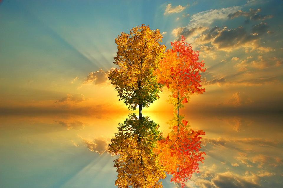 https://cdn.pixabay.com/photo/2017/10/24/13/25/autumn-2884567_960_720.png