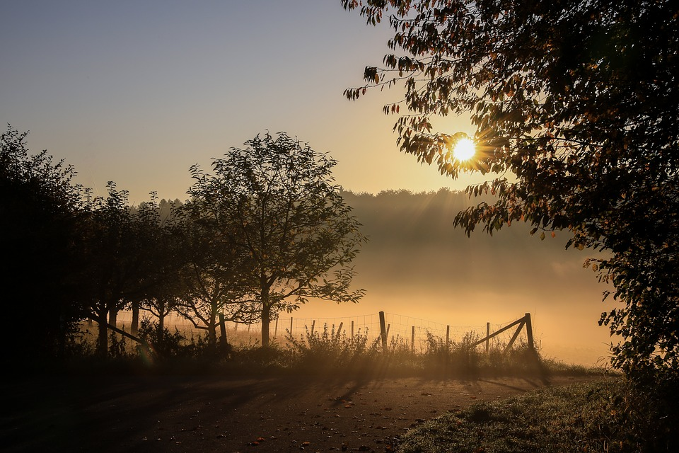 Beautiful Morning Images Of Nature