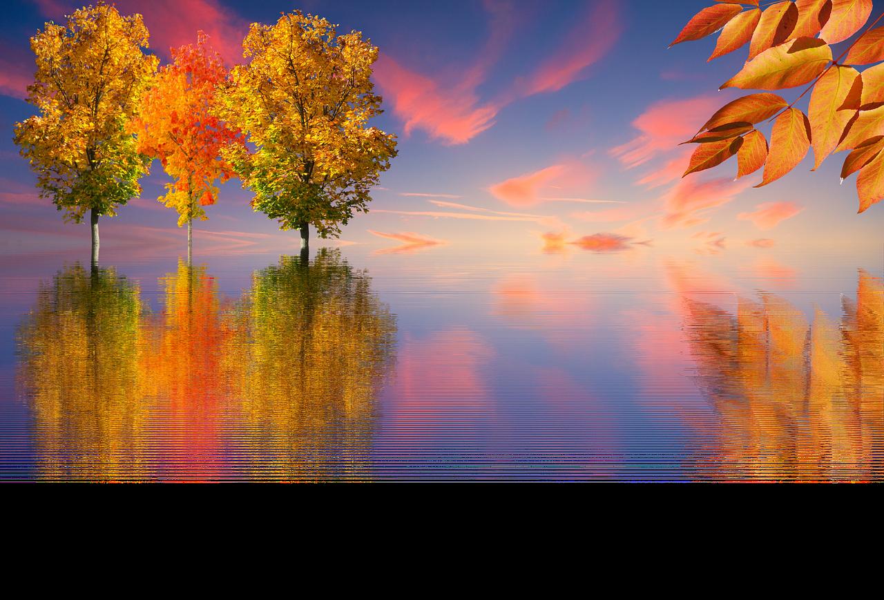 Рыбка, картинки с добрым утром природа осень