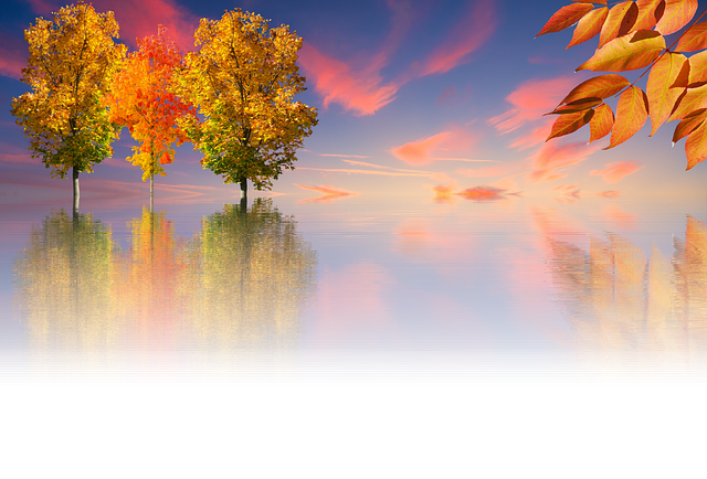 Autumn Tree Nature Golden · Free Image On Pixabay