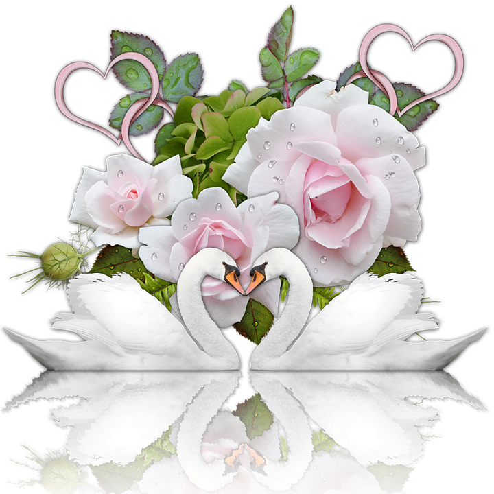 Wedding Bilder · Pixabay · Kostenlose Bilder herunterladen