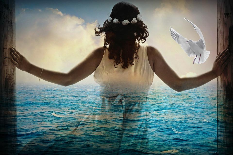 Woman, Girl, Sea, Silhouette, Ocean, Clouds, Seagull