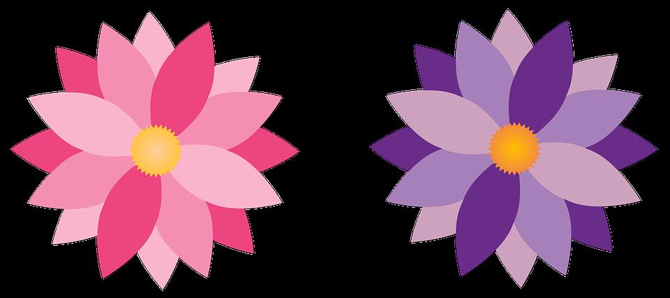 Fleurs Couleur Rose Lilas Image Gratuite Sur Pixabay