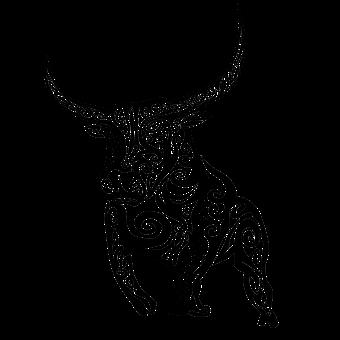 Toro Imágenes Pixabay Descarga Imágenes Gratis