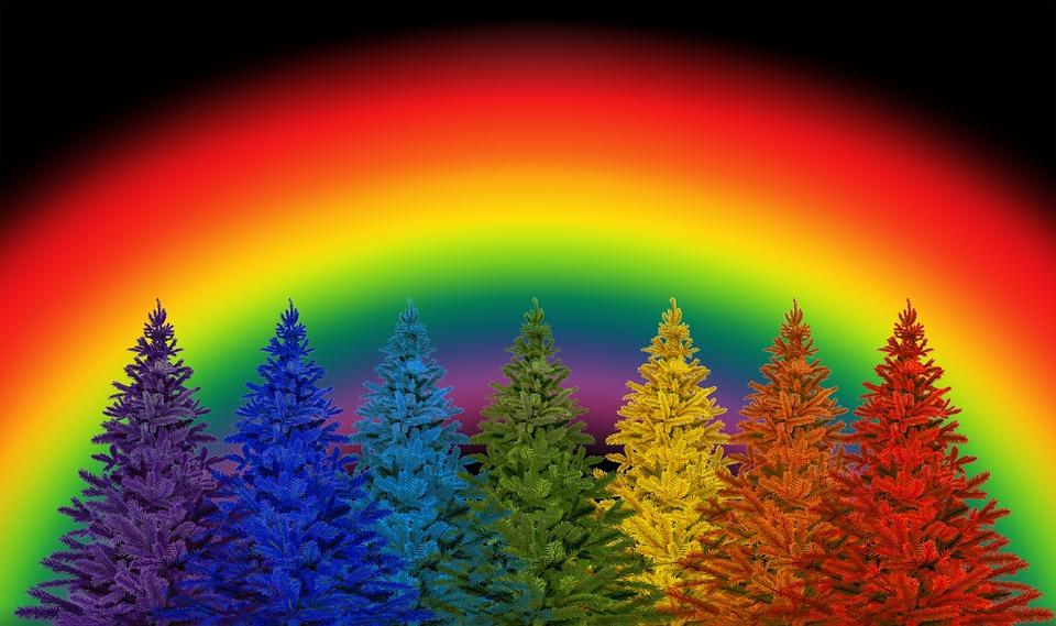 rainbowchristmastrees