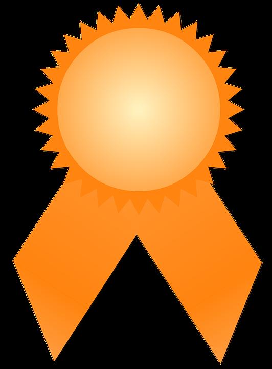 Medaglia Premio Guarnizione Il Primo Posto Concorso