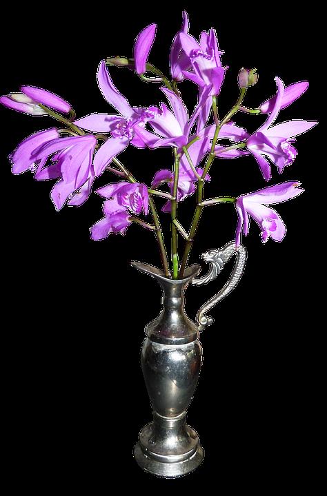 Chinese Orchids Vase Free Photo On Pixabay