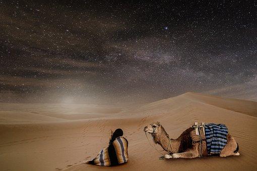 Desert, Night, Starry Sky, Person