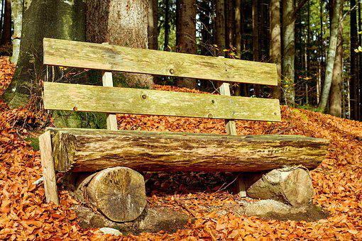Bank, Bench, Wooden Bench, Old Bench