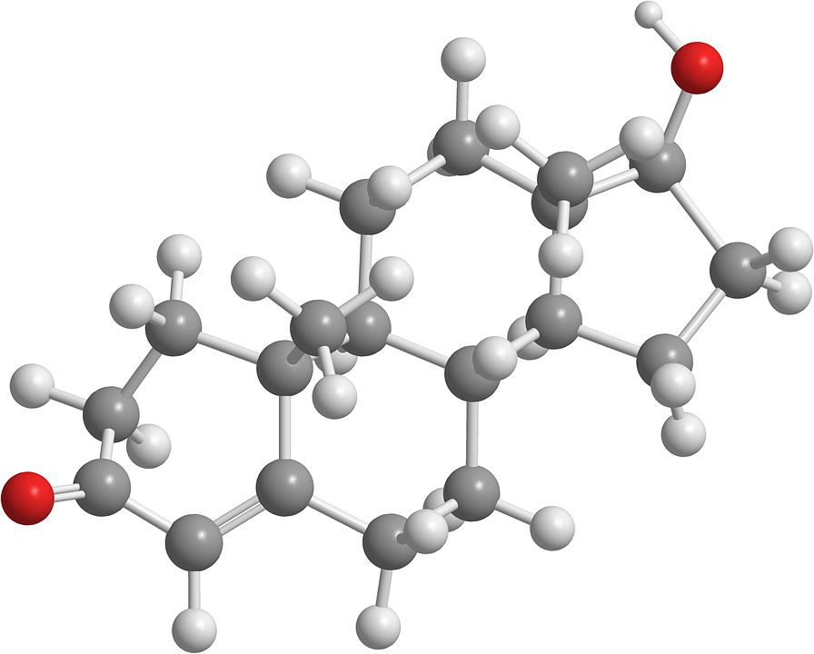 Testosterone is the main male sex hormone produced in men's testicles, but females also have small amounts of it produced in their ovaries. The adrenal glands also produce small amounts of this steroid hormone.