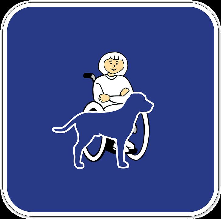 Handicap, Companion Dog, Service Dog, Therapy Dog