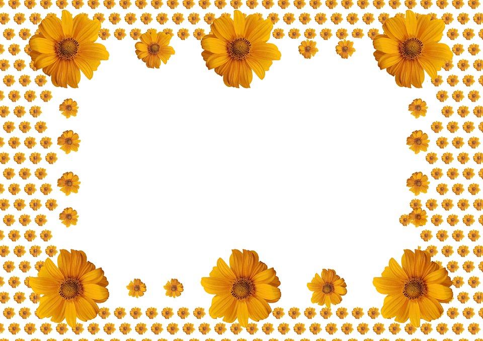 Sunflower Photo Frame On · Free image on Pixabay