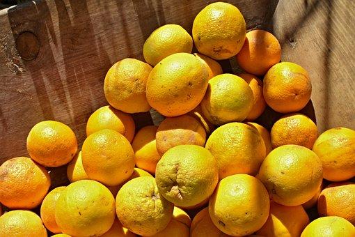 Oranges, Tropical Fruits, Natural