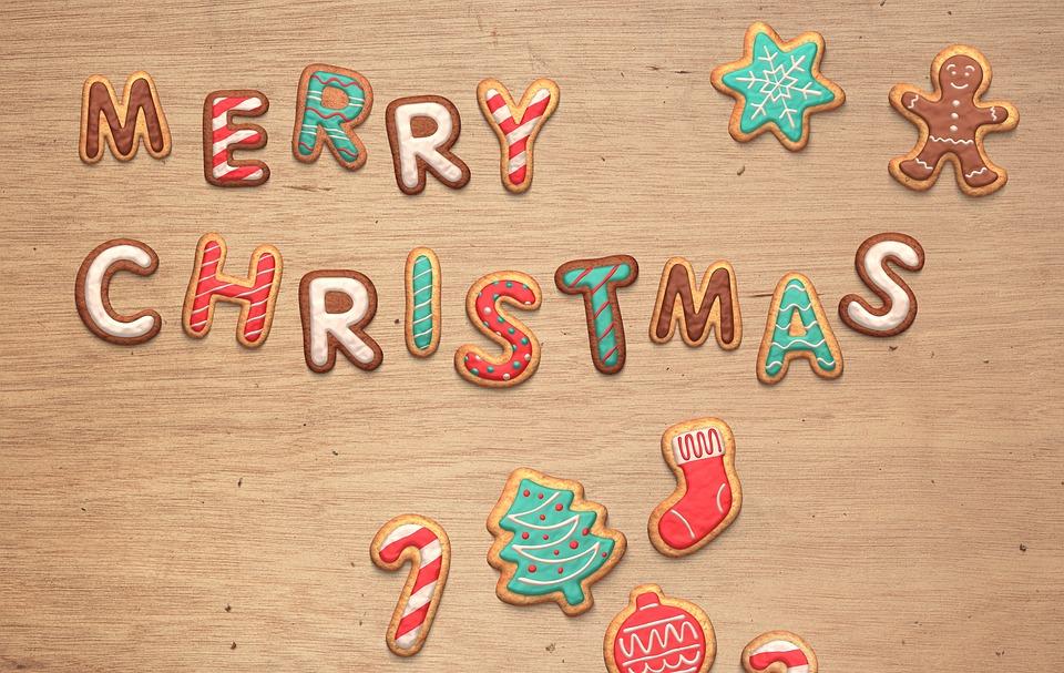 Lustig Frohe Weihnachten.Weihnachten Lustig Frohe Kostenloses Foto Auf Pixabay