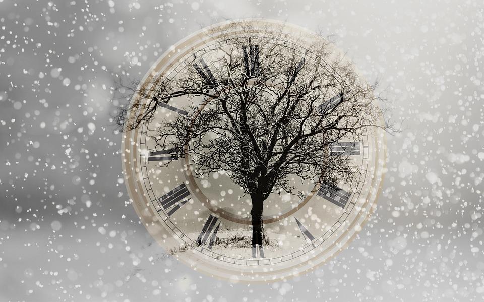 Schnee, Schneefall, Neujahr, Silvester, Baum