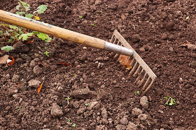 Rastrillo Jardinería Jardín La - Foto gratis en Pixabay