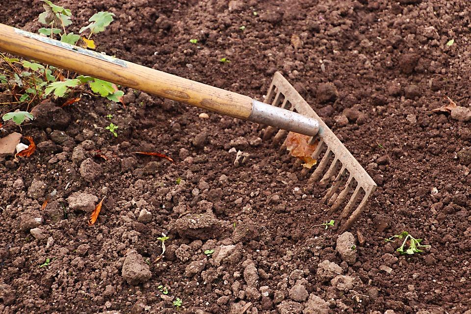 Râteau, Jardinage, Jardin, Agriculture, Travail, Outil