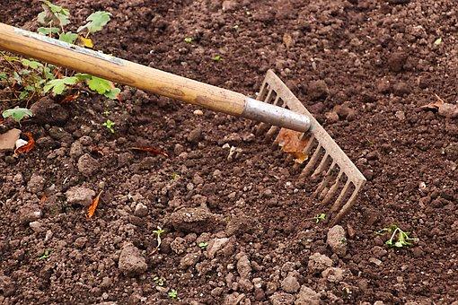 Rake, Gardening, Garden, Agriculture