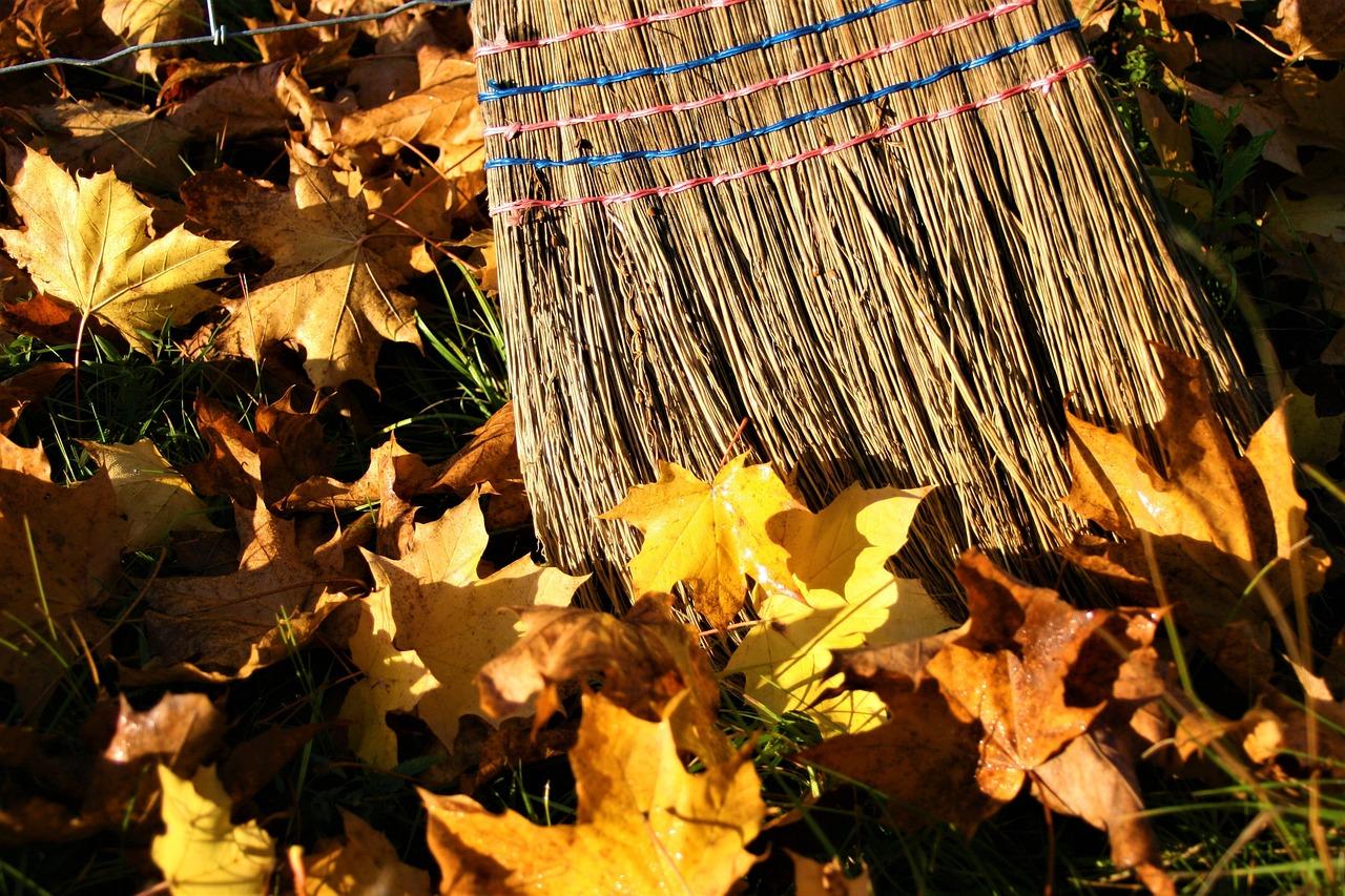 Yellow Leaves Autumn Gold - Free photo on Pixabay