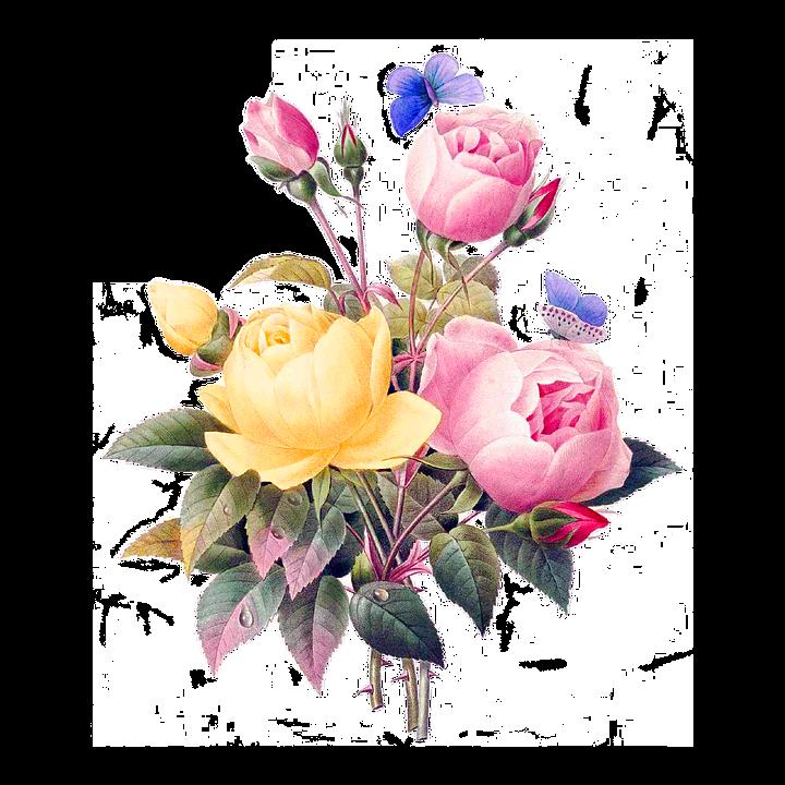 Fleurs, Vintage, Coupure, Découper, Dos,Nu, Bouquet