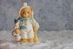 winter, bear, bears