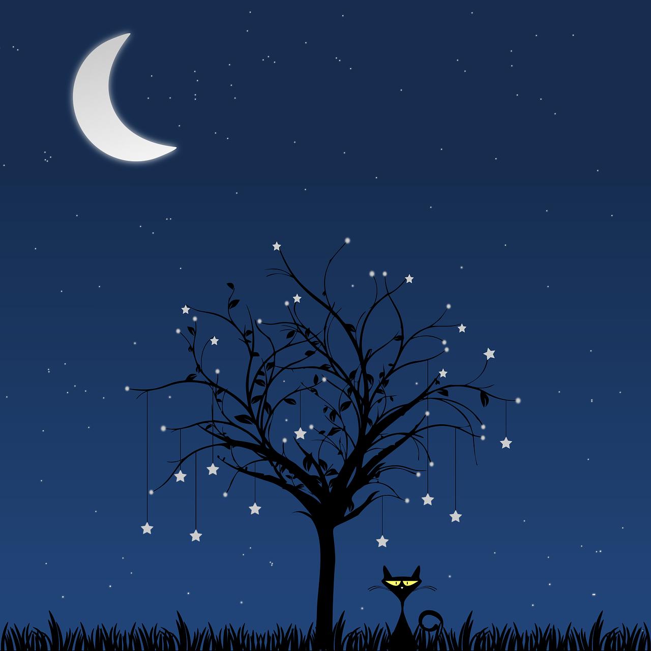 Днем, открытки тихая ночь