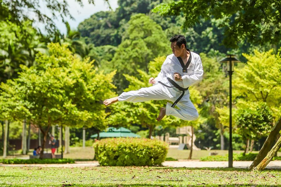 総合格闘技, カンフー, キック, アジア, 飛行, ジャンプ