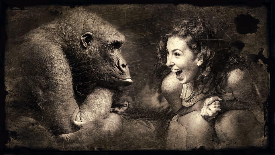 Komponowanie, Małpa, Kobieta, Śmiać Się, Sepia, Brązowy