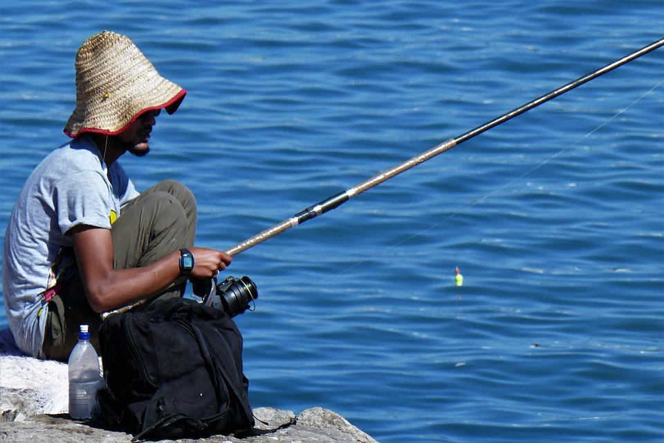 angler fishing fish free photo on pixabay