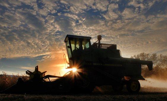 В Липецкой области уборка сои перешагнула экватор, урожай подсолнечника снят с 42% площадей