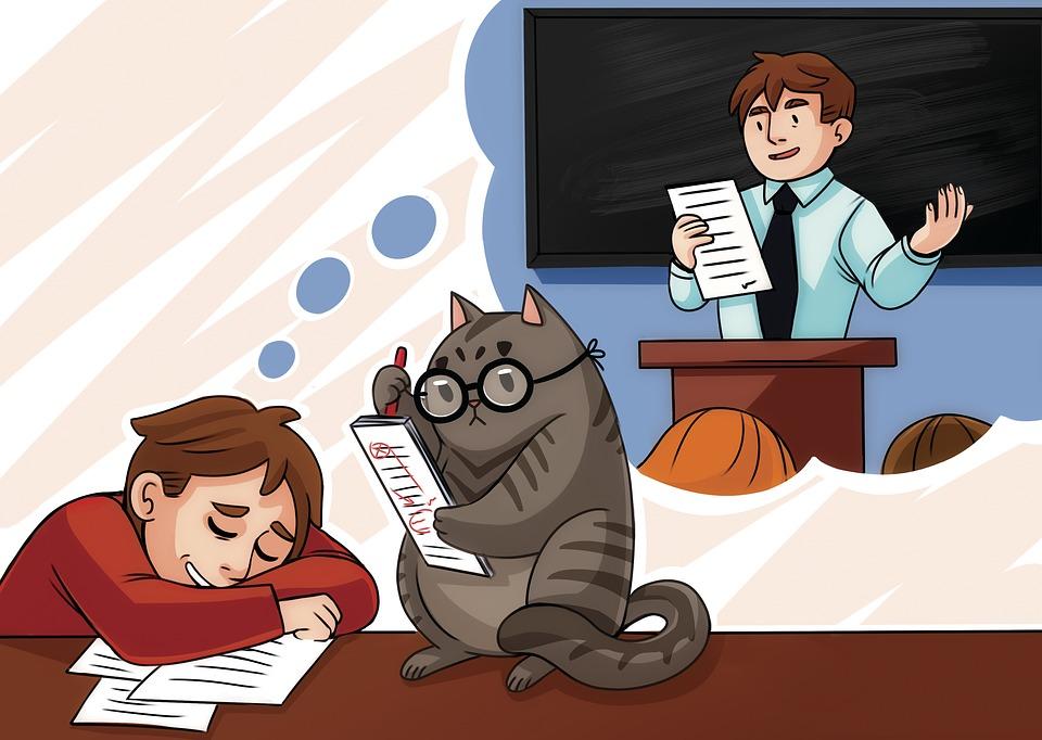 illustration study student diploma image on  study student diploma