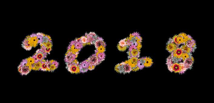 Nieuwjaar gratis afbeeldingen op pixabay for Decoration nouvel an 2018