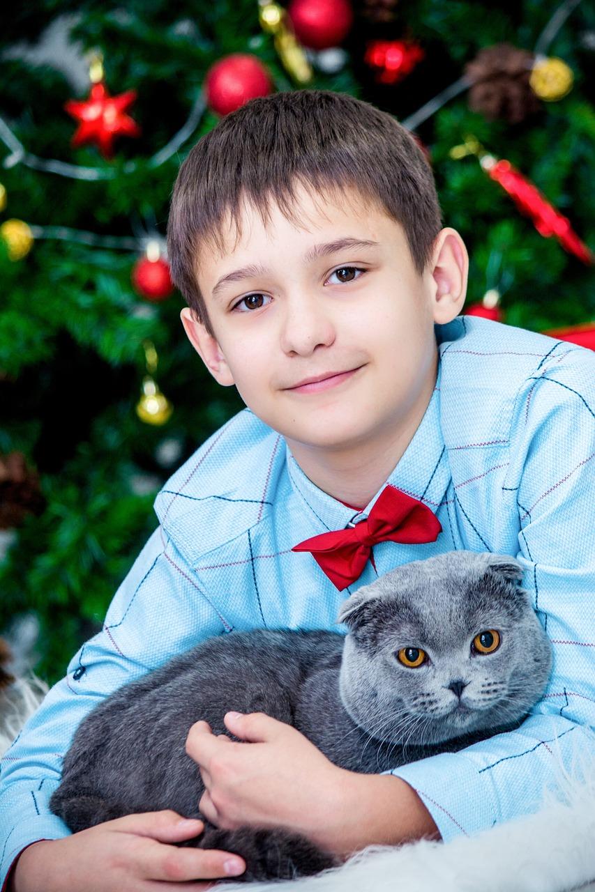 Картинки котов мальчиков