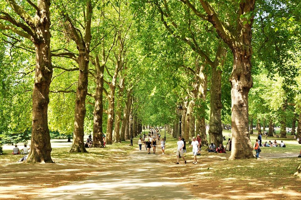 緑豊かな公園, ロンドン, イギリス, イングランド, 公園, ツリー, 市, 観光, 平和, パス