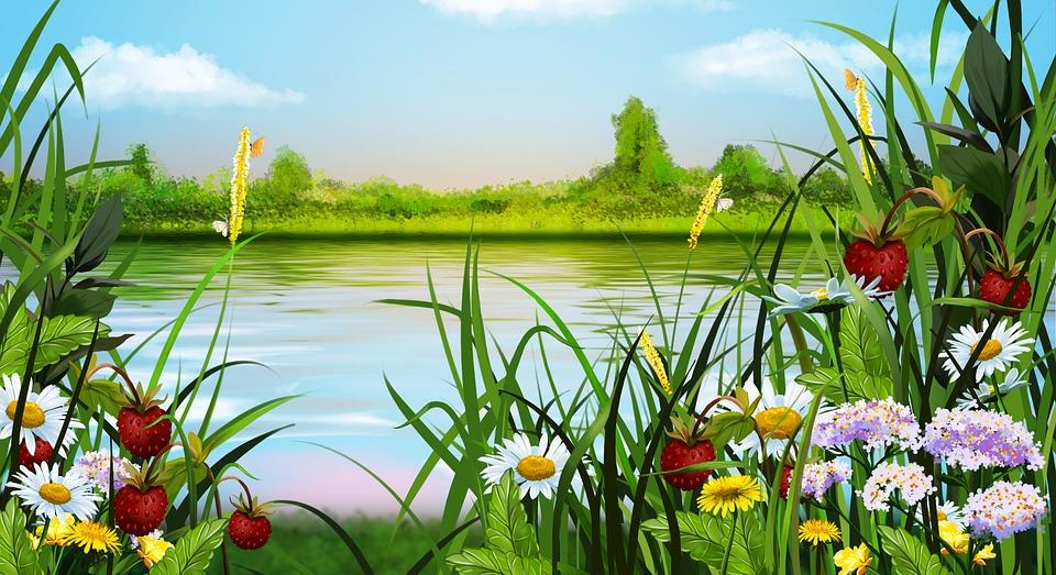 Sommer, Landschaft, Blumen, Zeichnung, Beere, Erdbeere