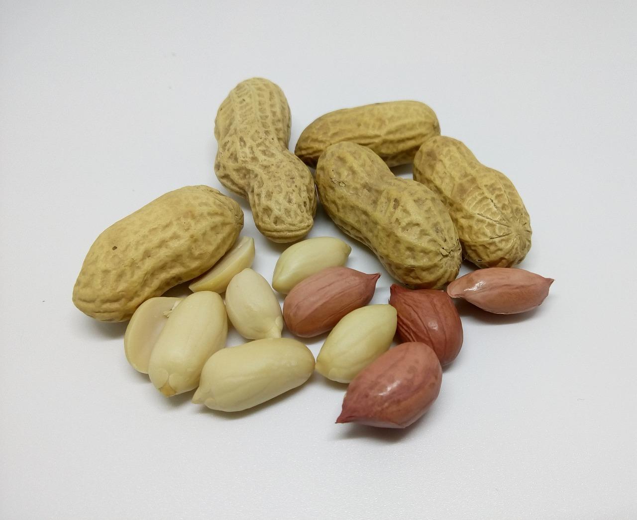 Картинки арахиса для детей