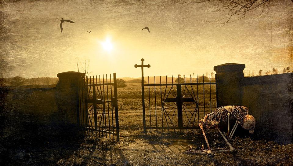 ファンタジー, 墓地, スケルトン, 入力, クロス, 光, バックライト, バット, 神秘的な, 構成します